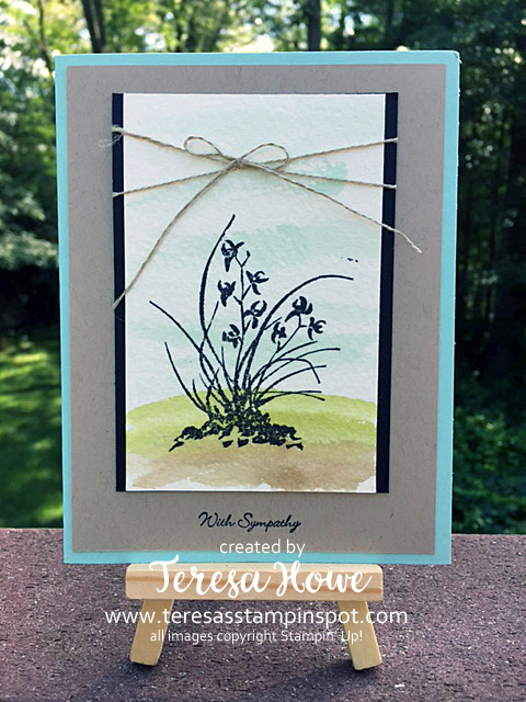Artistically Asian, Teeny Tiny Wishes, Watercoloring, SU!, Stampin' Up!