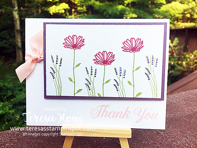 Daisy Delight, SU!, Stampin' Up!