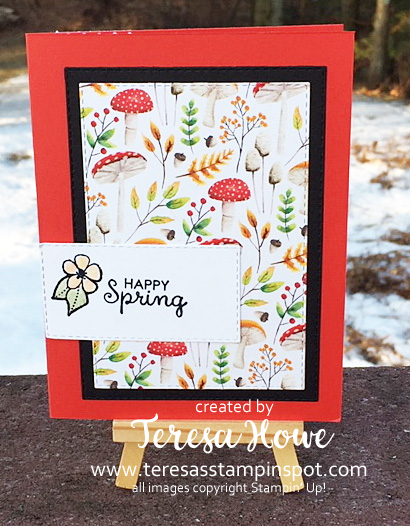 #popupwiper, Painted Seasons, Fabled Friends, Spring, Easter, Stampin' Up!, SU! #2019Occasions