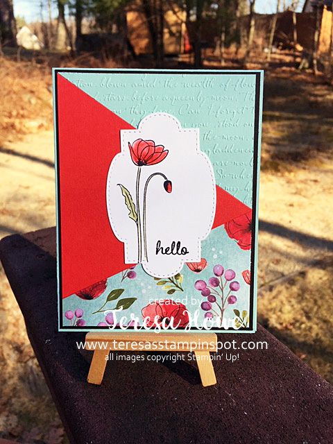TriCut, DSP, Hello, Friend, Poppies, Painted Poppies, Stampin' Up!, SU!, #2020Occasions
